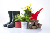 Garden tools, boots and spring flowers — 图库照片