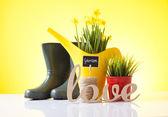 Love gardening — Stock Photo