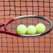 Постер, плакат: Tennis racket and tennis ball sports equipment