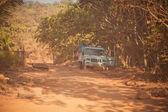 Safari in Goa — Stock Photo