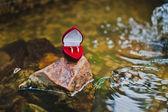 Pair of golden wedding rings — Stock Photo