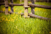 Fence in village — Stock Photo