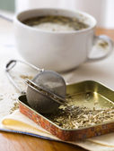 Fresh yerba mate — Stock Photo