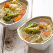 Tasty vegetable soup - Photo