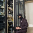 Stock Photo: Robber in black mask hack server room downloading daton laptop