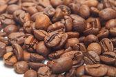 Isolate coffee beans. Macro. White backgound — Stock Photo