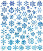 Set of 72 snowflakes — Stock Vector