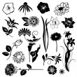 Set of flower design elements isolated on white background — Stock Vector
