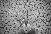 Standing on dry soil — Stock Photo