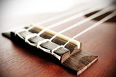 Part of Ukulele — Stockfoto