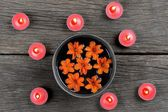 Flowers in bowl — Stock Photo