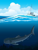 Whale shark and boat — Stock Vector