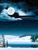 Paisaje invernal con lago y luna llena. — Vector de stock
