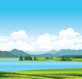 Natuur landschap - gras, meer en bergen. — Stockvector