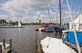 яхт-клуб на берегу озера в центре города — Стоковое фото