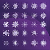 Set of snowflakes violet background — Stock Vector