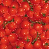Background of tomatoes — Stock Vector