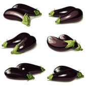 Set of aubergine — Stock Vector