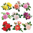 Set of multicolored roses — Wektor stockowy  #45838867
