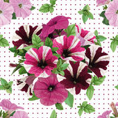 Seamless pattern, bouquet of petunias — Stock Vector