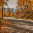 Road to the mountains in fall — Stock Photo #17850633