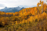 Rugged Colorado Mountains in Fall — Stock Photo