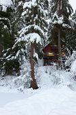 Cabin in Snow — Stock Photo