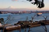 Porto de tacoma — Fotografia Stock