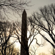 Stock Photo: Silhouette of Washington Monument