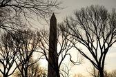 Silhouette of Washington Monument — Stock Photo