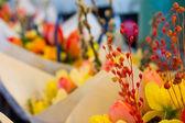 Cut Flowers — Stock Photo