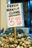 Clams for Sale at Farmers Market — Stock Photo