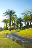 Golfplatz in kalifornien — Stockfoto