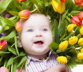 Flowerpower — Стоковое фото