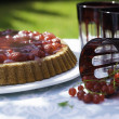 Fruit cake on a table in the garden — Stock Photo #28424421