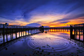 Lotus Lake in thailand — Stock Photo