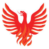 Red hot chili Phoenix — Stock Photo