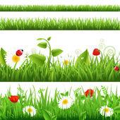 Gras achtergronden instellen met bloemen en lieveheersbeestje — Stockvector