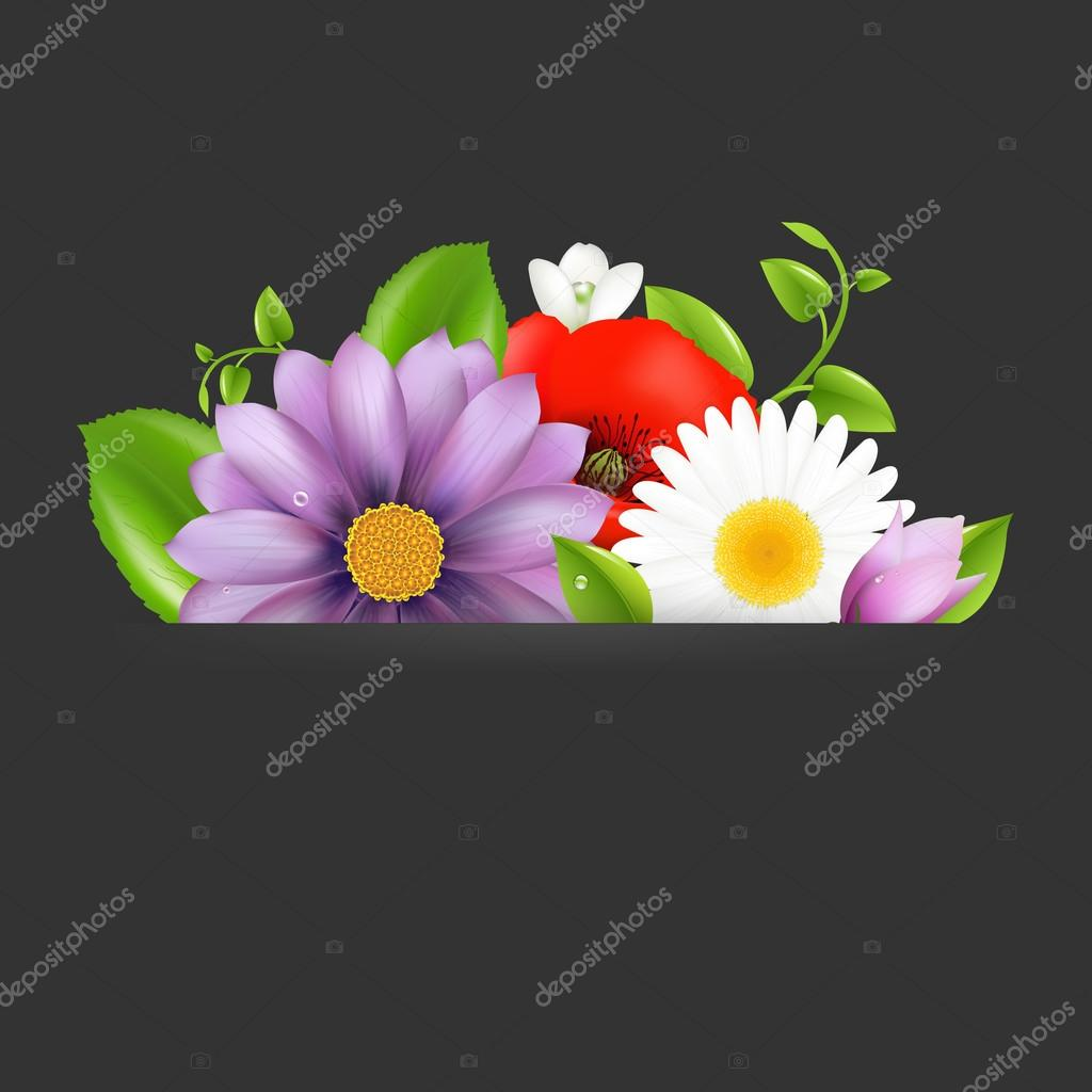 Summer Flowers With Divider On Dark, Vector Illustration — ベクター素材ストック #12716563