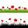 Border With Grass And Poppy — Stock Vector #13416030
