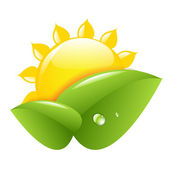 太阳和叶 — 图库矢量图片