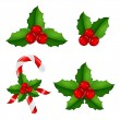 Christmas Holly Berry Set — Stock Vector #15842621