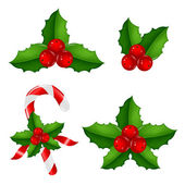 Christmas Holly Berry Set — Stock Vector