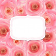 Label With Pink Rose — Stock Vector
