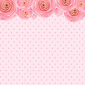 Pink Rose Background  — Stock Vector