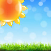 летнее время плакат с травой — Cтоковый вектор