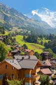 Wengen en bergen — Stockfoto