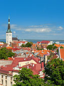 Old Town of Tallinn in the morning — Stock Photo