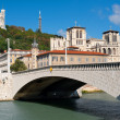 Lyon and Saone river in summer - Stock Photo