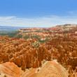 Bryce Canyon in a summer day — Stock Photo